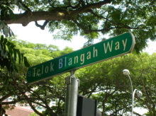 Telok Blangah Way photo thumbnail #1