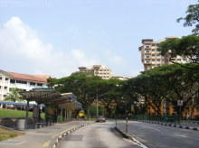 Woodlands Avenue 1 thumbnail photo