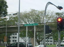 Woodlands Avenue 3 photo thumbnail #2