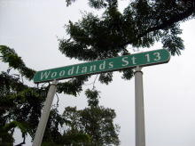 Woodlands Street 13 photo thumbnail #4