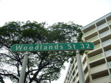 Woodlands Street 32 photo thumbnail #5