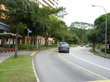 Woodlands Street 41 thumbnail photo