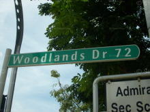 Woodlands Drive 72 thumbnail photo
