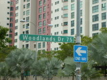 Woodlands Drive 75 thumbnail photo