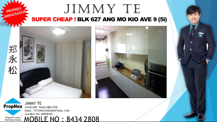 Ang Mo Kio Avenue 9 thumbnail photo
