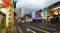 LITTLE INDIA CONSERVATION AREA photo thumbnail #2