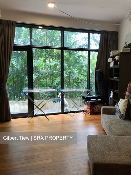 Emerald Hill Conservation Area (D9), Terrace #167064162