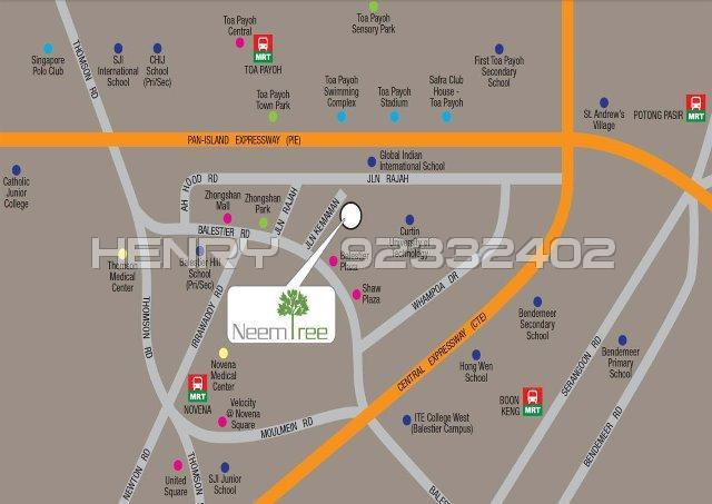Neem Tree (D12), Apartment #87829472