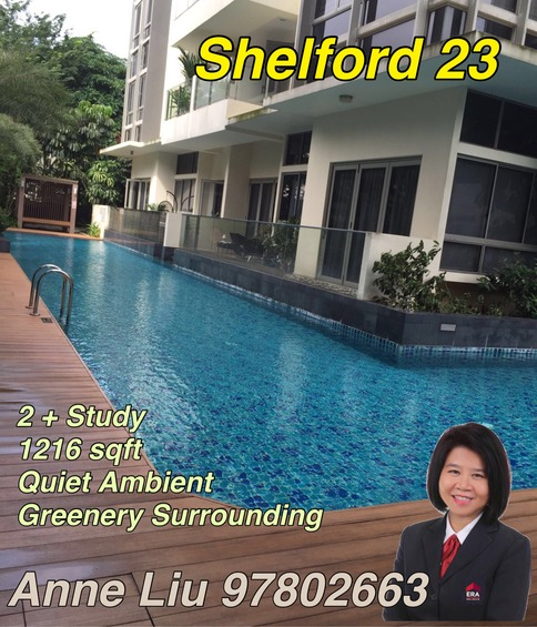 Shelford 23