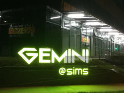 gemini-@-sims photo thumbnail #9