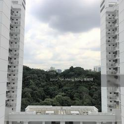 telok-blangah-heights photo thumbnail #3