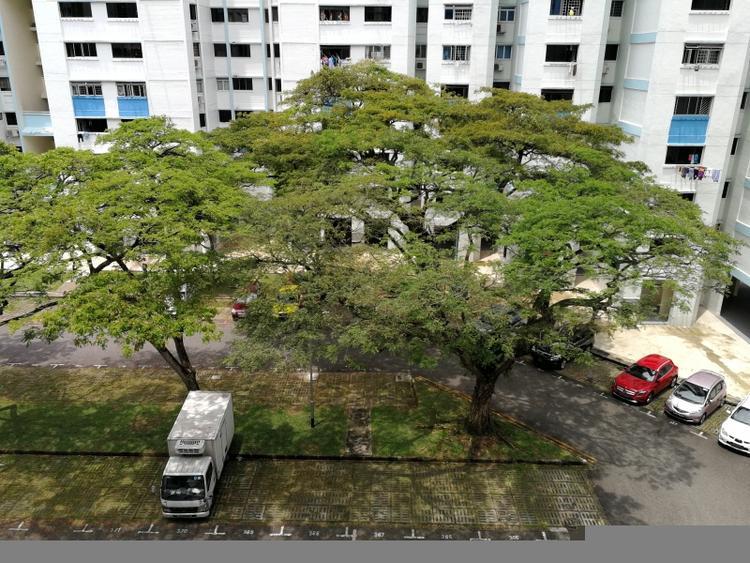 107 Bukit Purmei Road