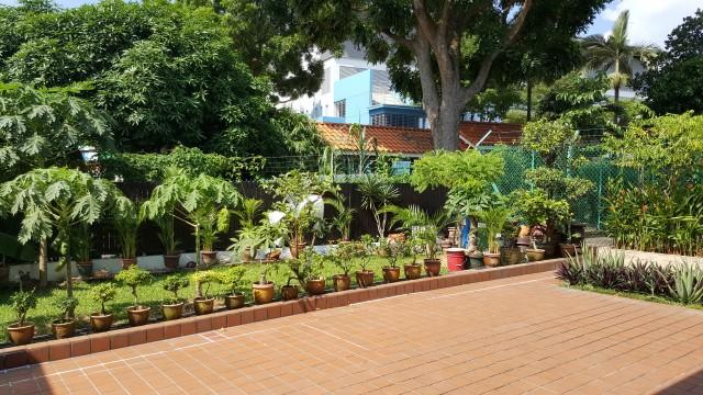 Tai Yuan Garden