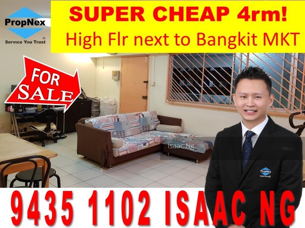 236 Bukit Panjang Ring Road