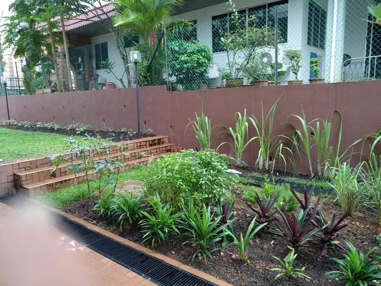 Springleaf Garden