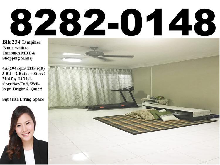 234 Tampines Street 21
