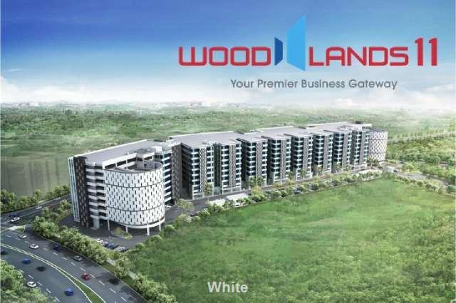 Woodlands 11