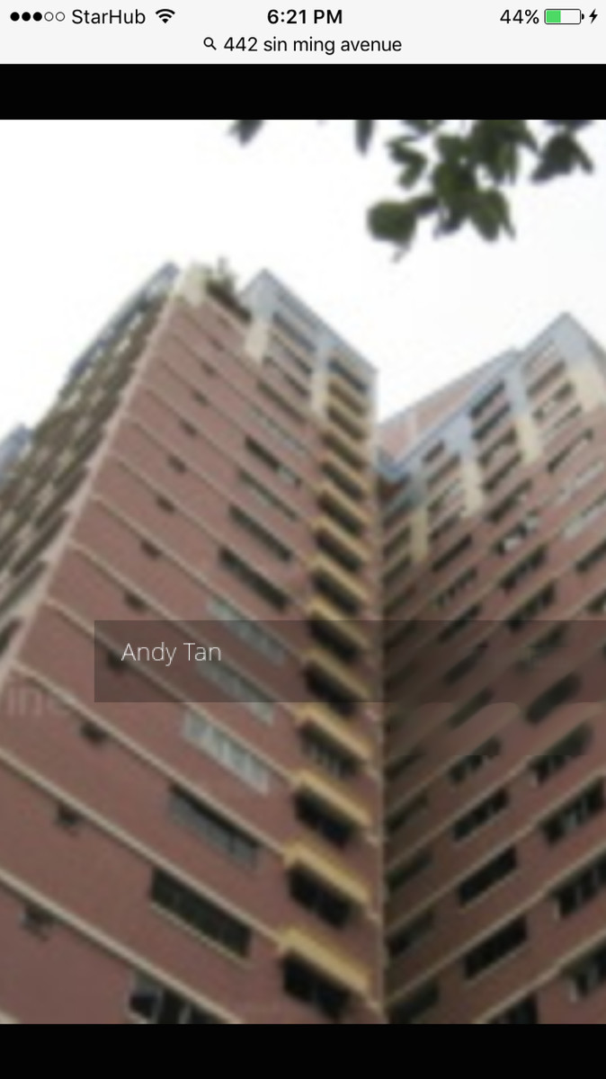 442 Sin Ming Avenue