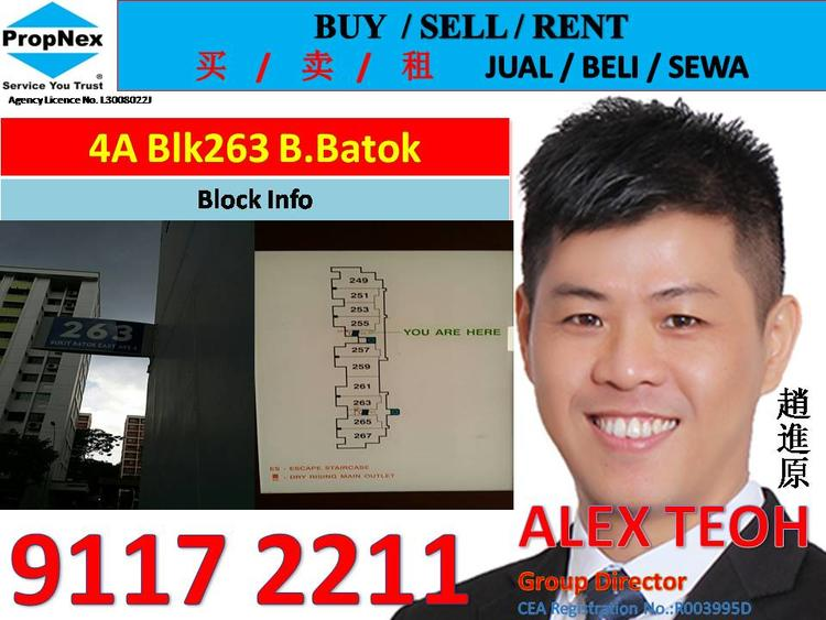 263 Bukit Batok East Avenue 4