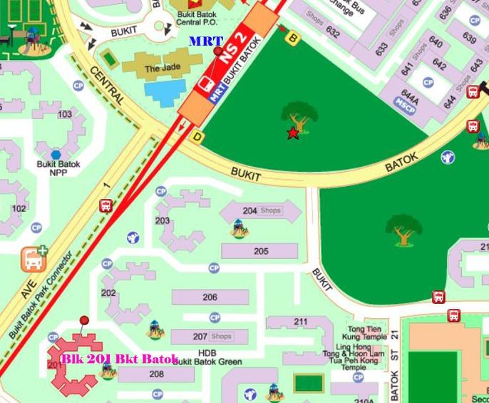 201 Bukit Batok Street 21