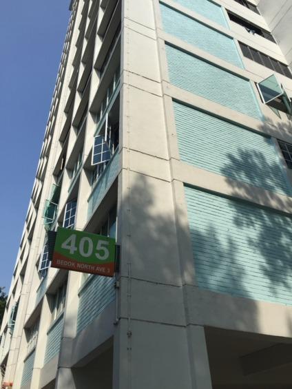 405 Bedok North Avenue 3