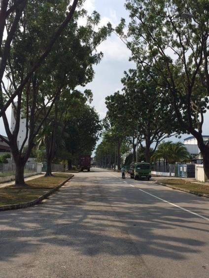 Tuas Avenue 11