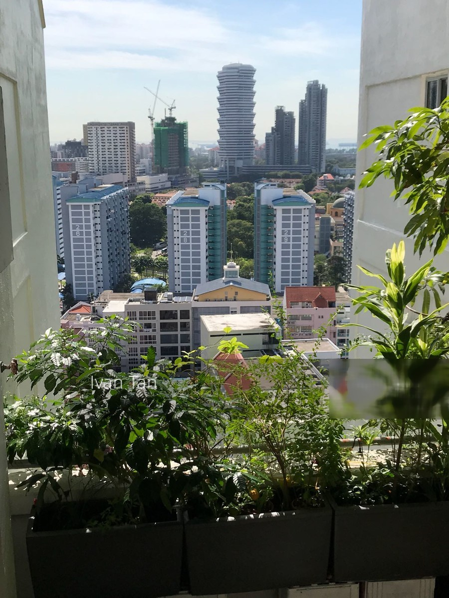 Blk 639 Rowell Road (Central Area), HDB 5 Rooms #183749362