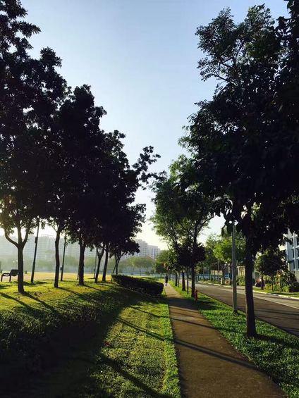 272 Jurong West Street 24