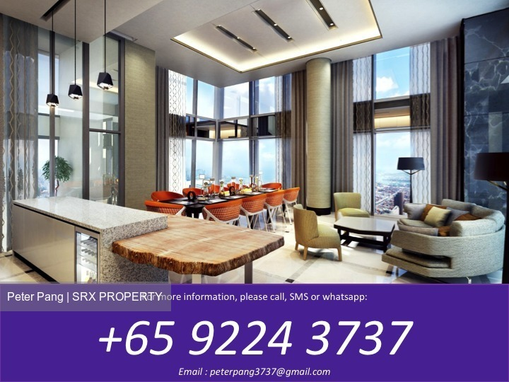 Wallich Residence At Tanjong Pagar Centre (D2), Apartment #167268092