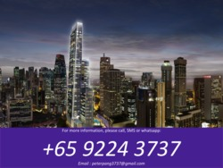 Wallich Residence At Tanjong Pagar Centre (D2), Apartment #167268032
