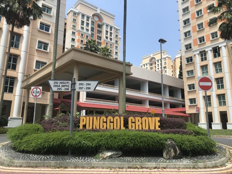 295 Punggol Central