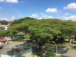Sembawang Hills Estate photo thumbnail #8