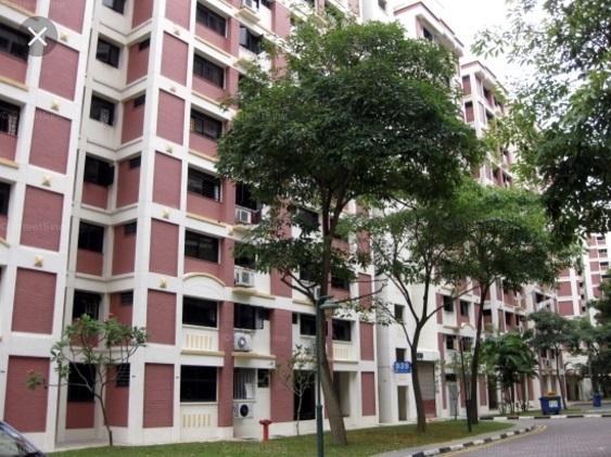 942 Jurong West Street 91