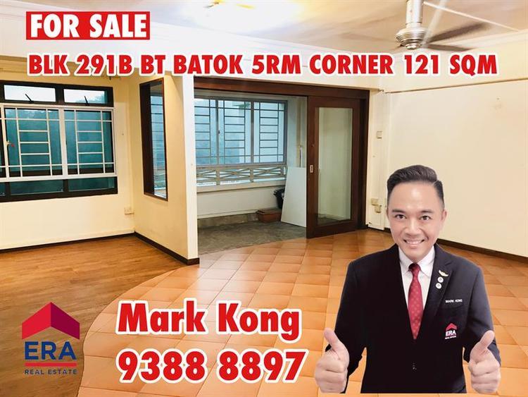 291B Bukit Batok Street 24