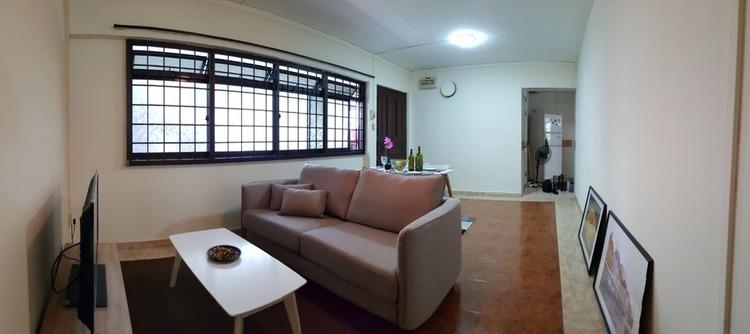 617 Jurong West Street 65