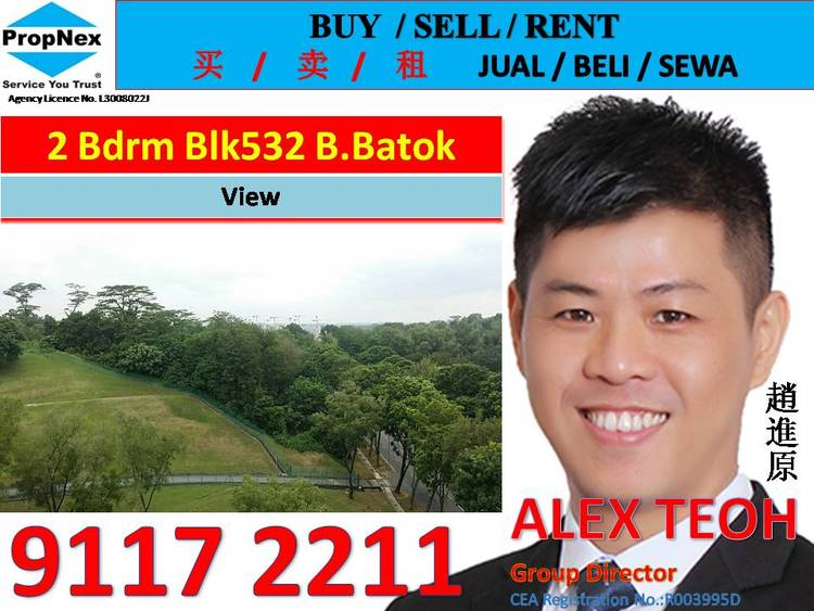532 Bukit Batok Street 51