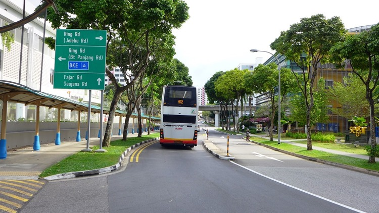 469 Segar Road