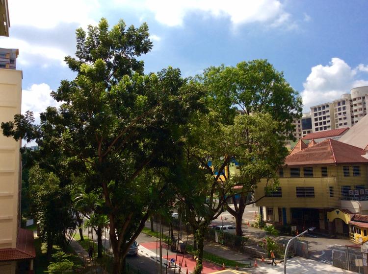 295 Choa Chu Kang Avenue 2