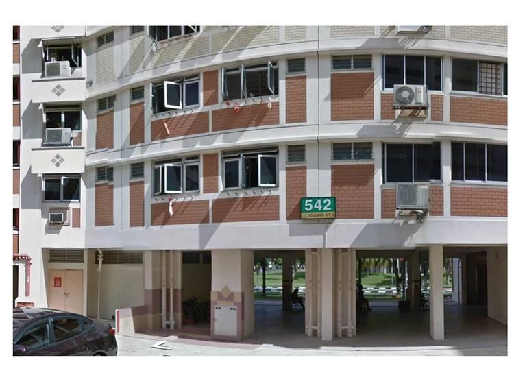 542 Hougang Avenue 8