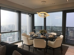 Wallich Residence At Tanjong Pagar Centre (D2), Apartment #180333772