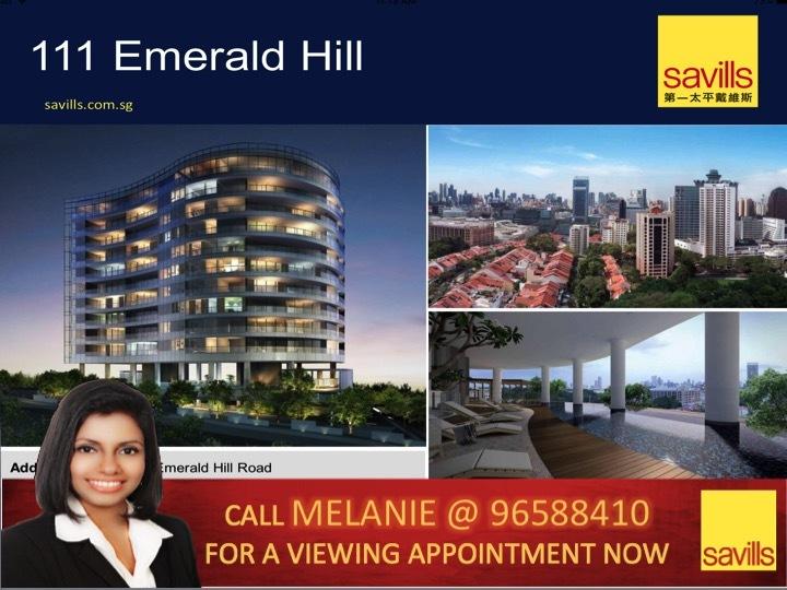 111 Emerald Hill