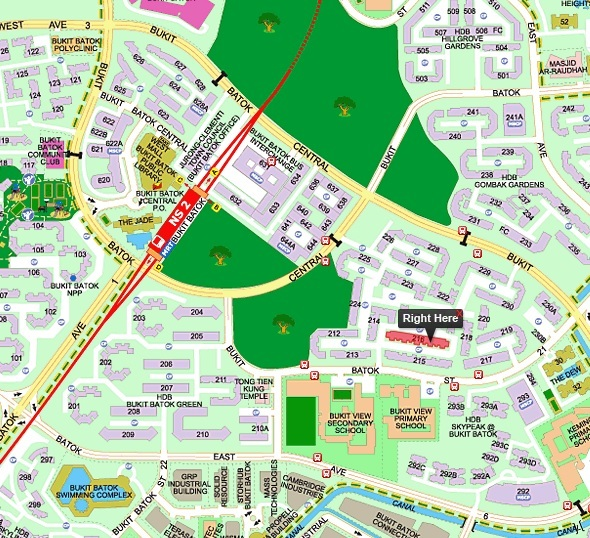 216 Bukit Batok Street 21