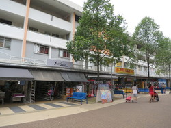 Clementi Avenue 3 photo thumbnail #5