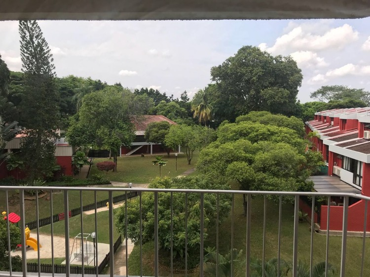 Mimosa Park