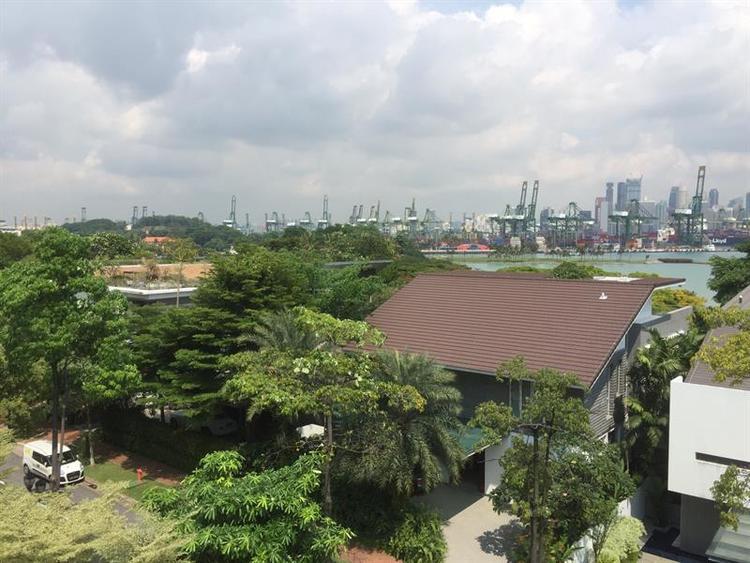 Lakeshore View