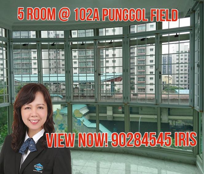 102A Punggol Field
