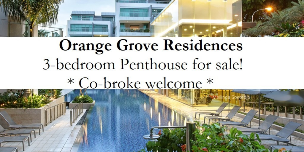 Orange Grove Residences