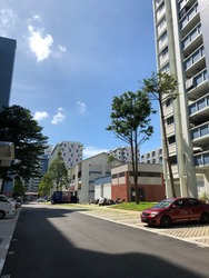 bukit-batok-street-31 photo thumbnail #13