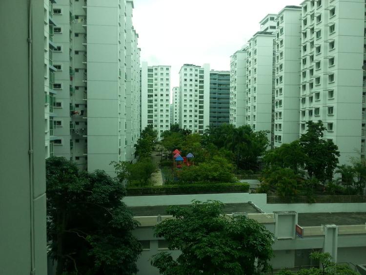 173D Punggol Field