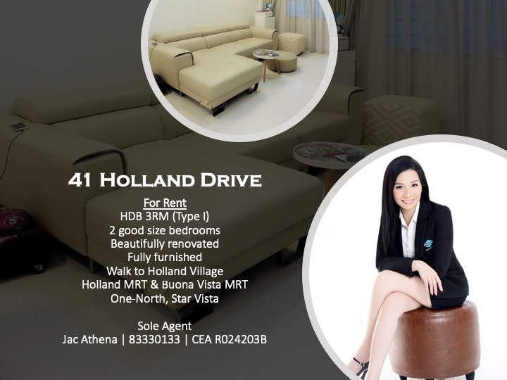 41 Holland Drive